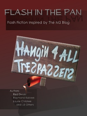 Flash in the Pan FREE eBook